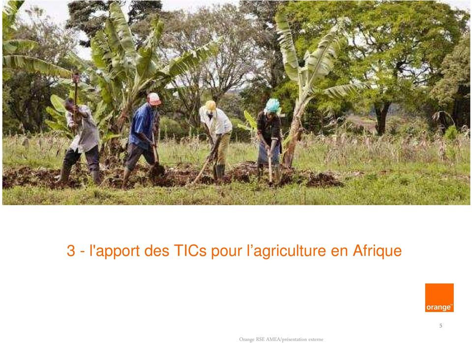 l agriculture