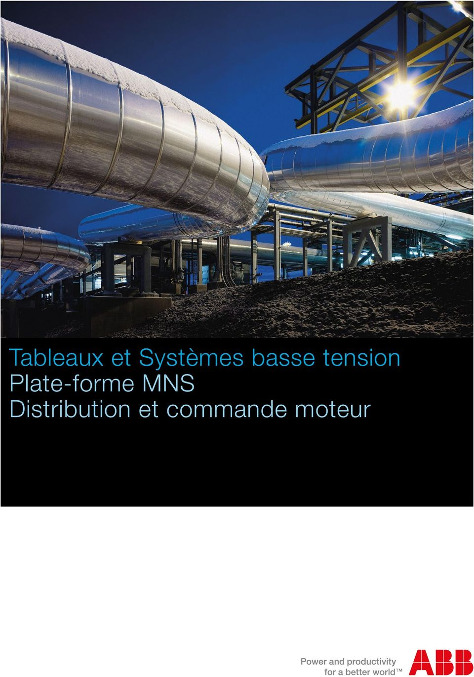 Plate-forme MNS