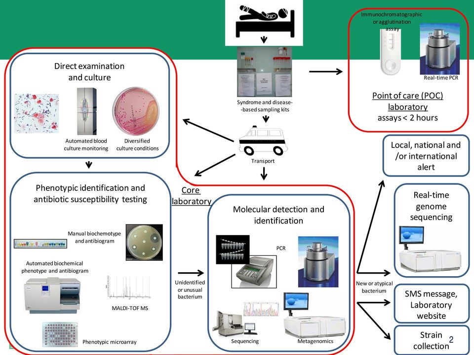 susceptibility testing Core laboratory Molecular detection and identification Real-time genome sequencing Manual biochemotype and antibiogram PCR Automated biochemical