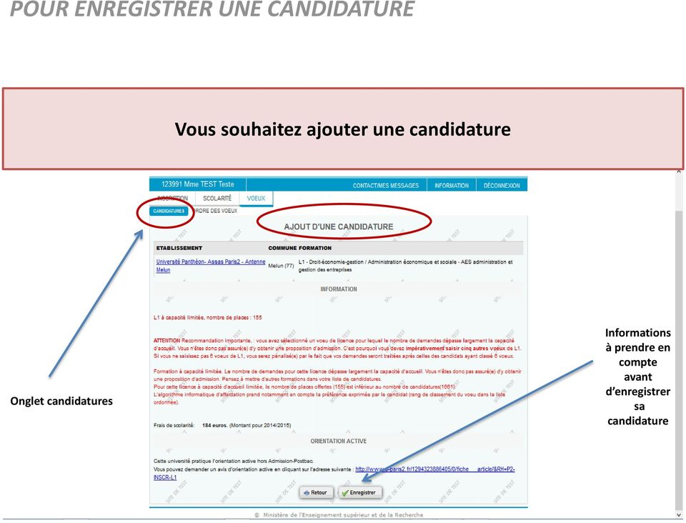 Onglet candidatures Informations à