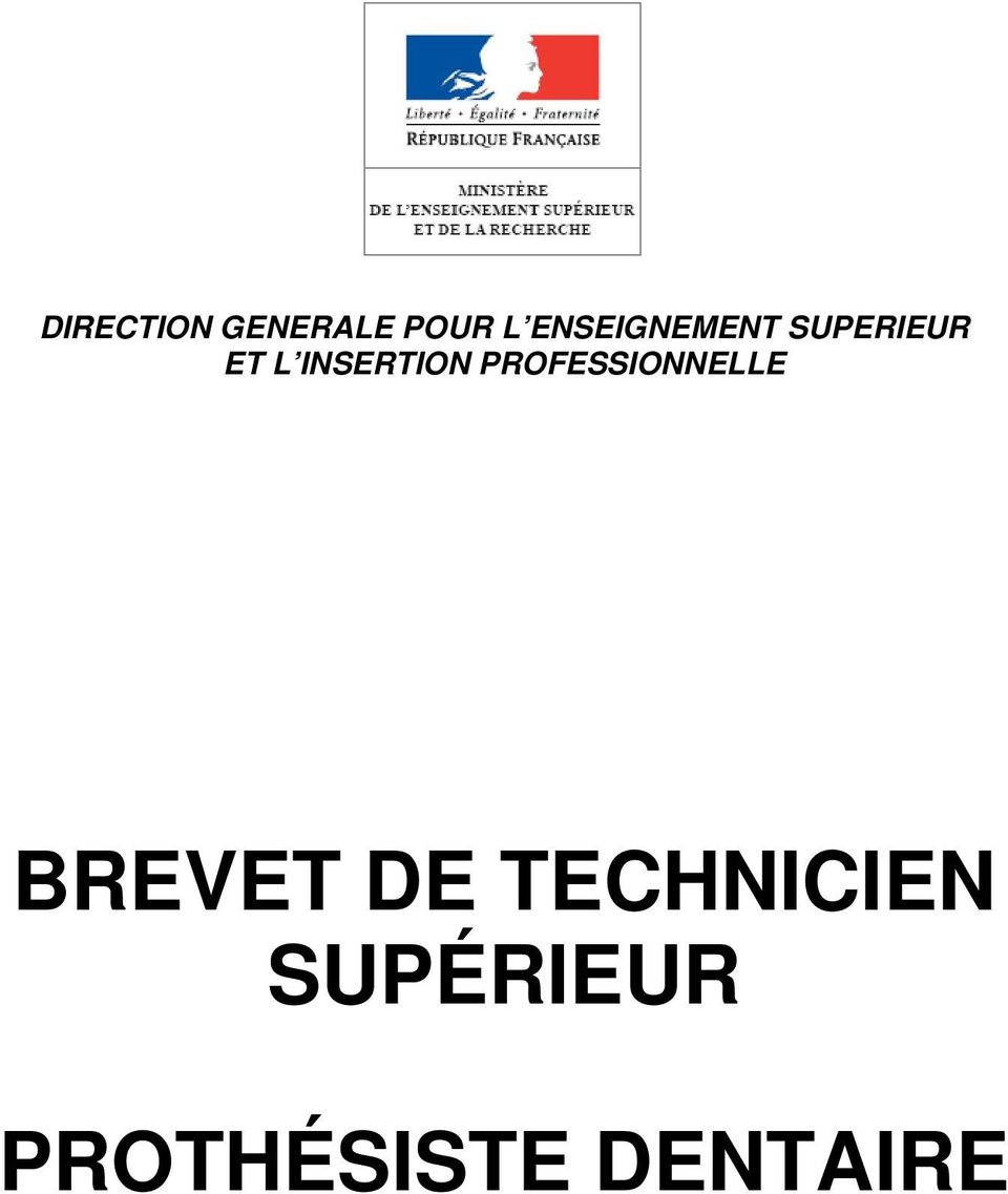 INSERTION PROFESSIONNELLE BREVET