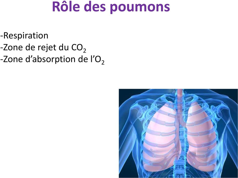 de rejet du CO 2
