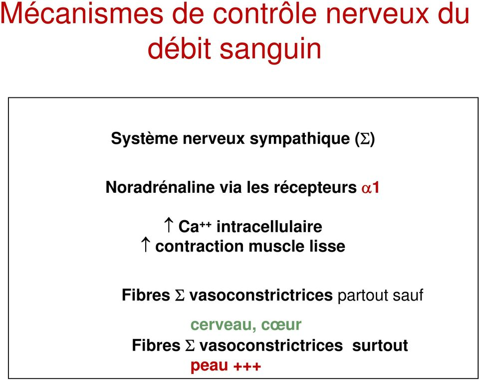 intracellulaire contraction muscle lisse Fibres