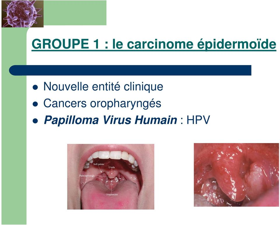 clinique Cancers