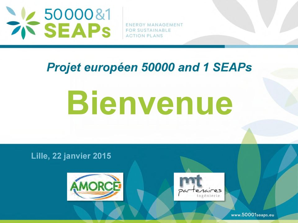 Development and Integration of SEAPs with Energy