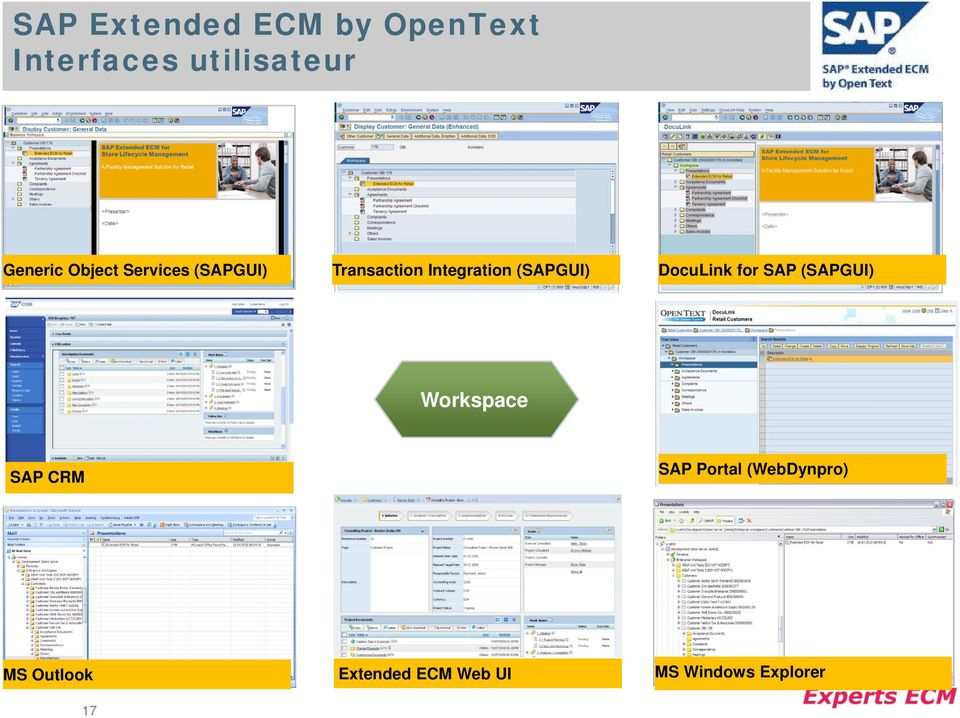 DocuLink for SAP (SAPGUI) Workspace SAP CRM SAP Portal