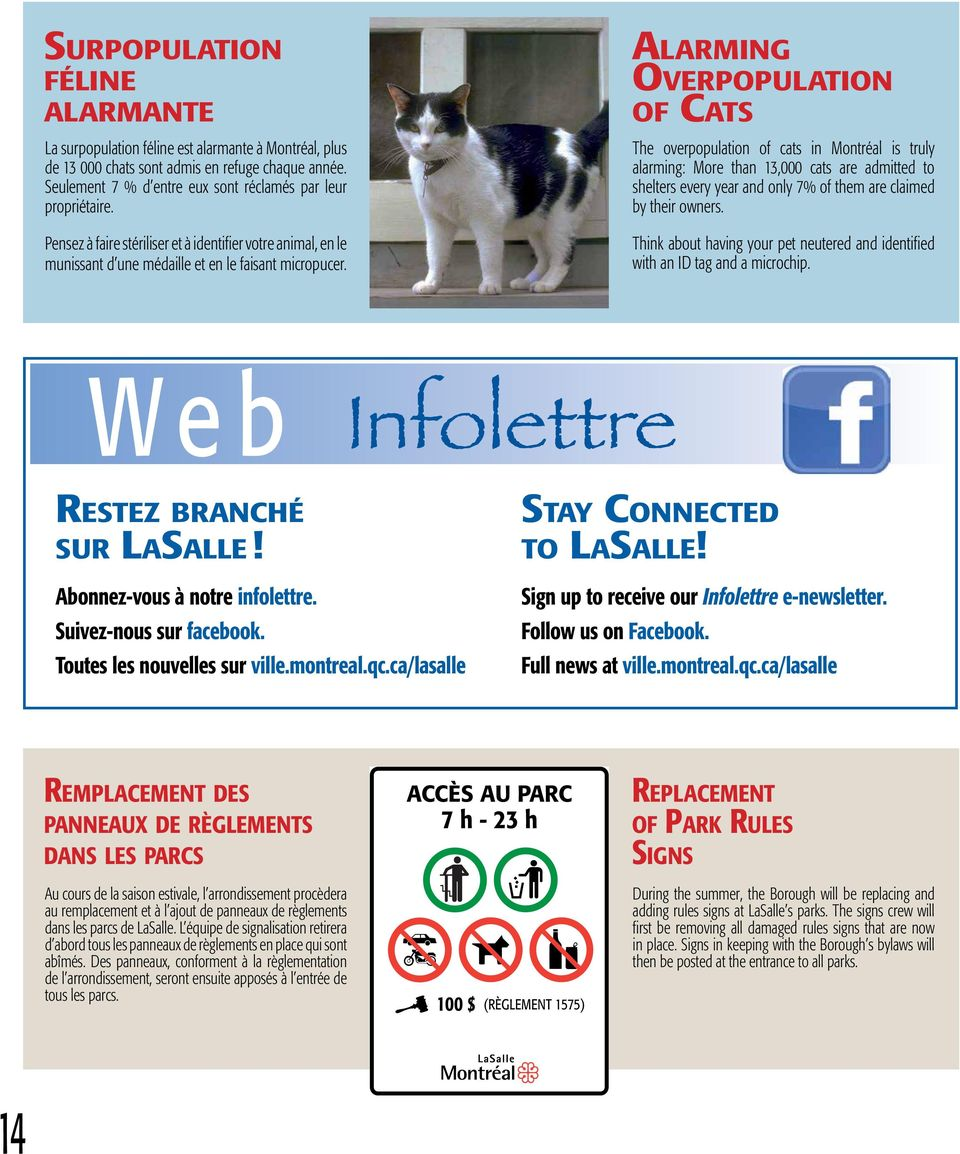 Alarming Overpopulation of Cats The overpopulation of cats in Montréal is truly alarming: More than 13,000 cats are admitted to shelters every year and only 7% of them are claimed by their owners.