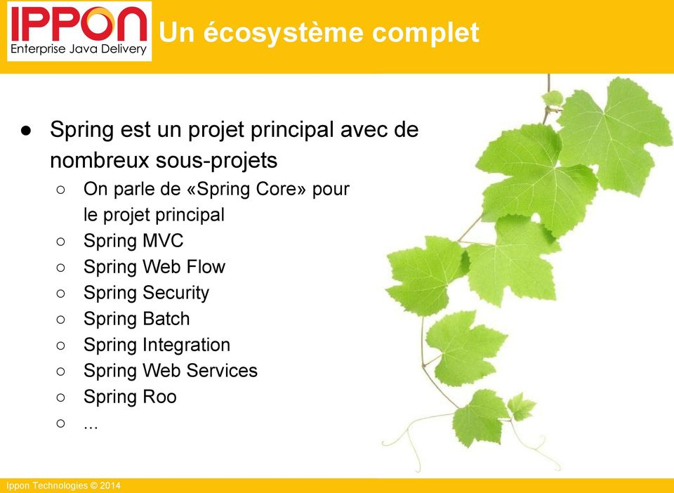 projet principal Spring MVC Spring Web Flow Spring Security