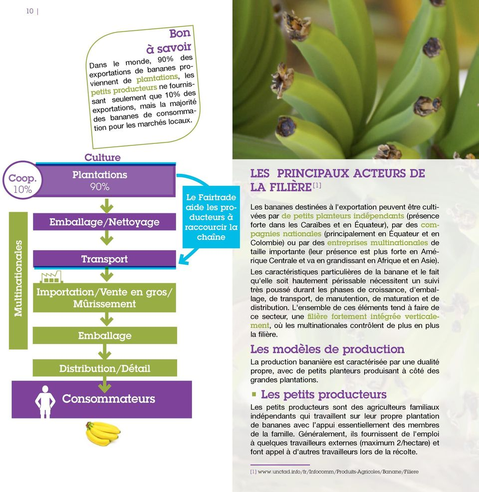 10% Multinationales Culture Plantations 90% Emballage/Nettoyage Transport Importation/Vente en gros/ Mûrissement Emballage Distribution/Détail Consommateurs Le Fairtrade aide les producteurs à