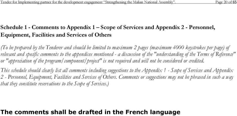 "maximum 2 pages (maximum 4000 keystrokes per page) of relevant and specific comments to the appendices mentioned - a discussion of the ""understanding of the Terms of Reference"" or ""appreciation of"