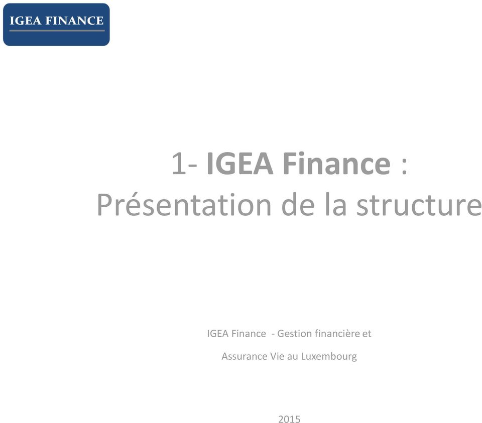 structure IGEA Finance -