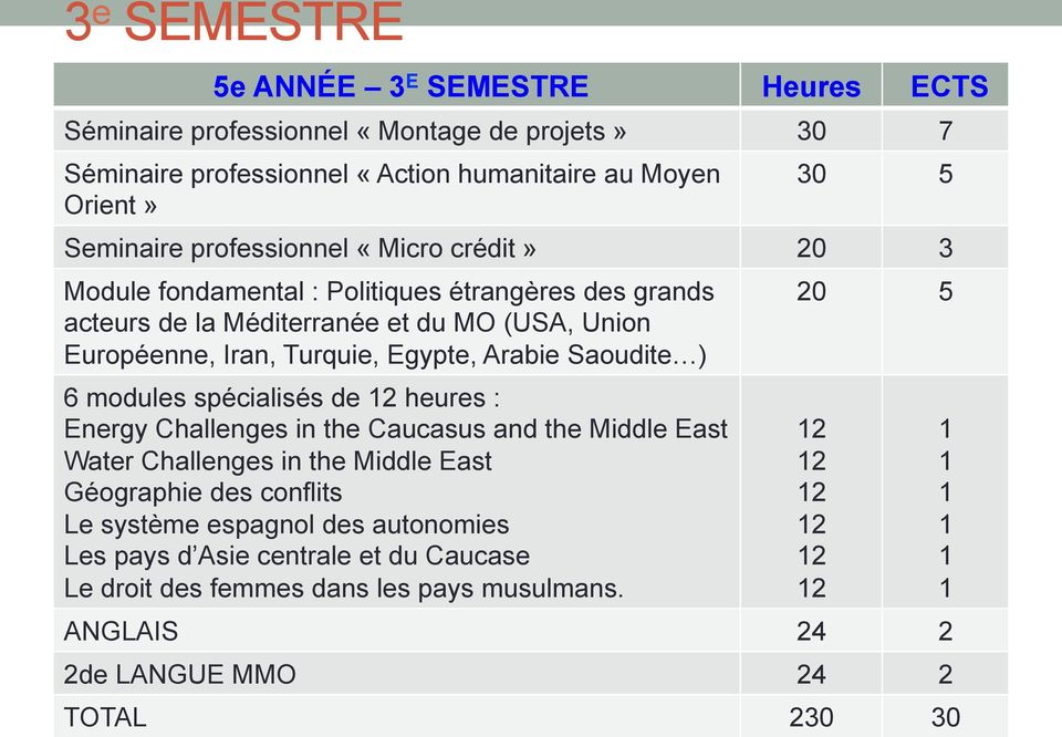 Arabie Saoudite ) 6 modules spécialisés de heures : Energy Challenges in the Caucasus and the Middle East Water Challenges in the Middle East Géographie des conflits Le