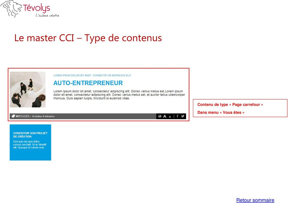 type «Page carrefour»