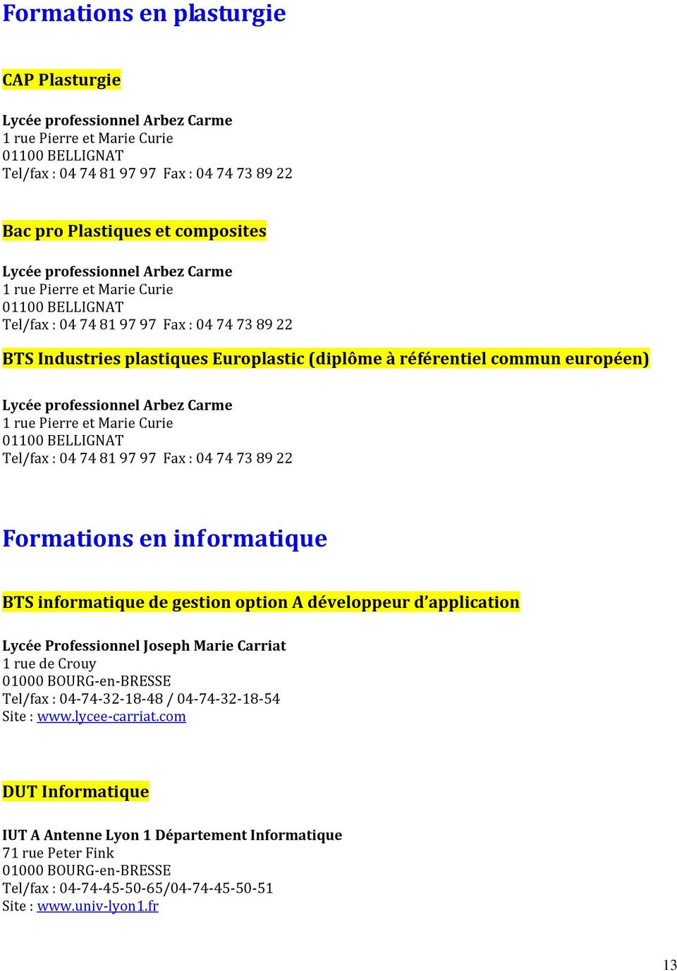 Fax : 04 74 73 89 22 Formations en informatique BTS informatique de gestion option A développeur d application Lycée Professionnel Joseph Marie Carriat Tel/fax : 04-74-32-18-48 /