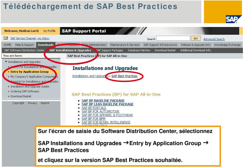 Upgrades Entry by Application Group SAP Best