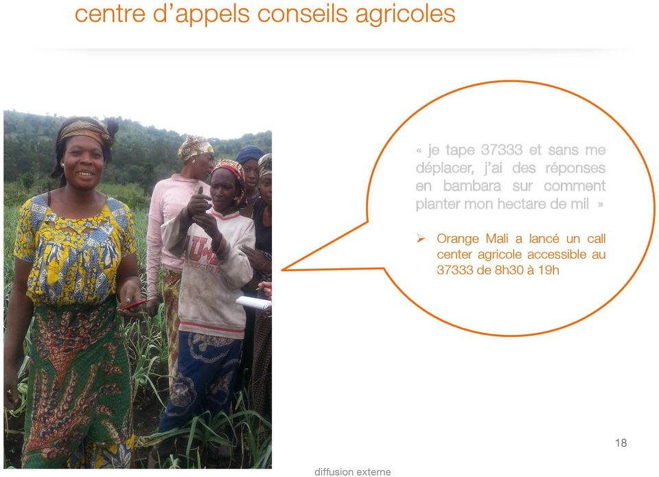 comment planter mon hectare de mil» Orange Mali a