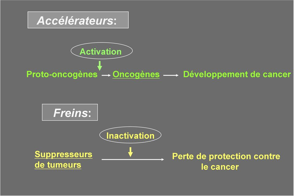 de cancer Freins: Inactivation