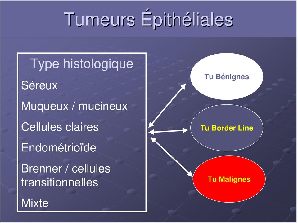 Endométrioïde Brenner / cellules