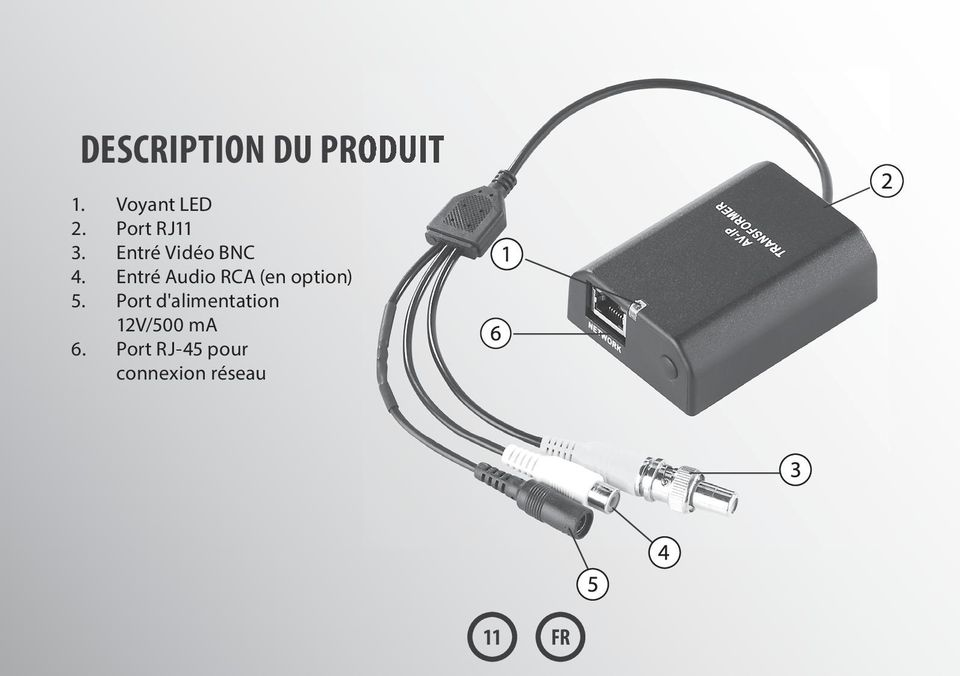 Entré Audio RCA (en option) 5.
