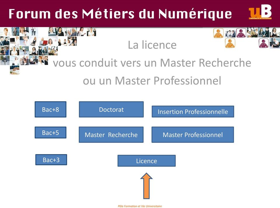 Doctorat Insertion Professionnelle Bac+5