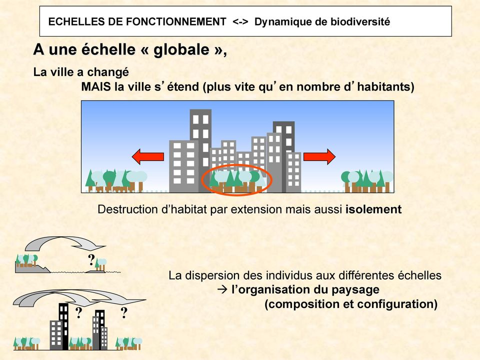 Destruction d habitat par extension mais aussi isolement?