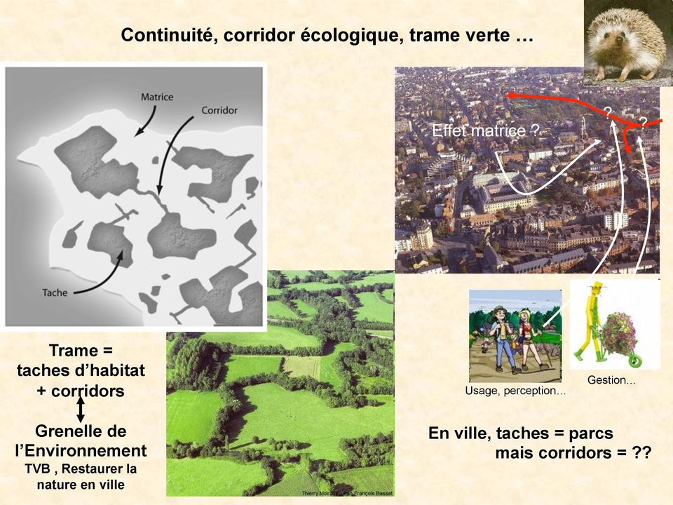 ?? Trame = taches d habitat + corridors Usage, perception