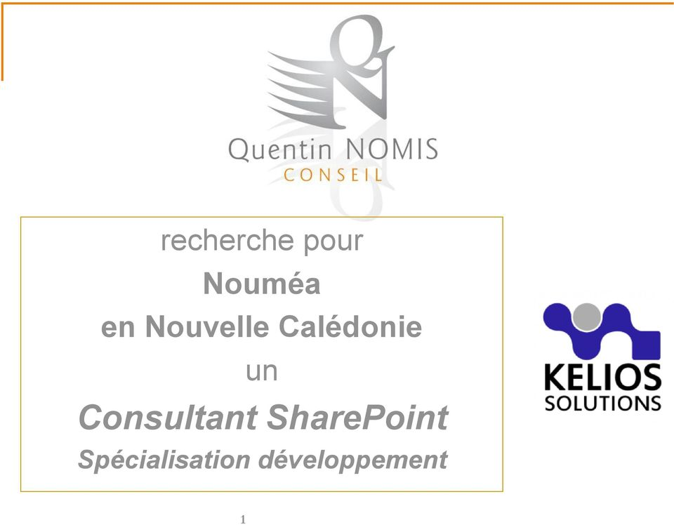 Consultant SharePoint