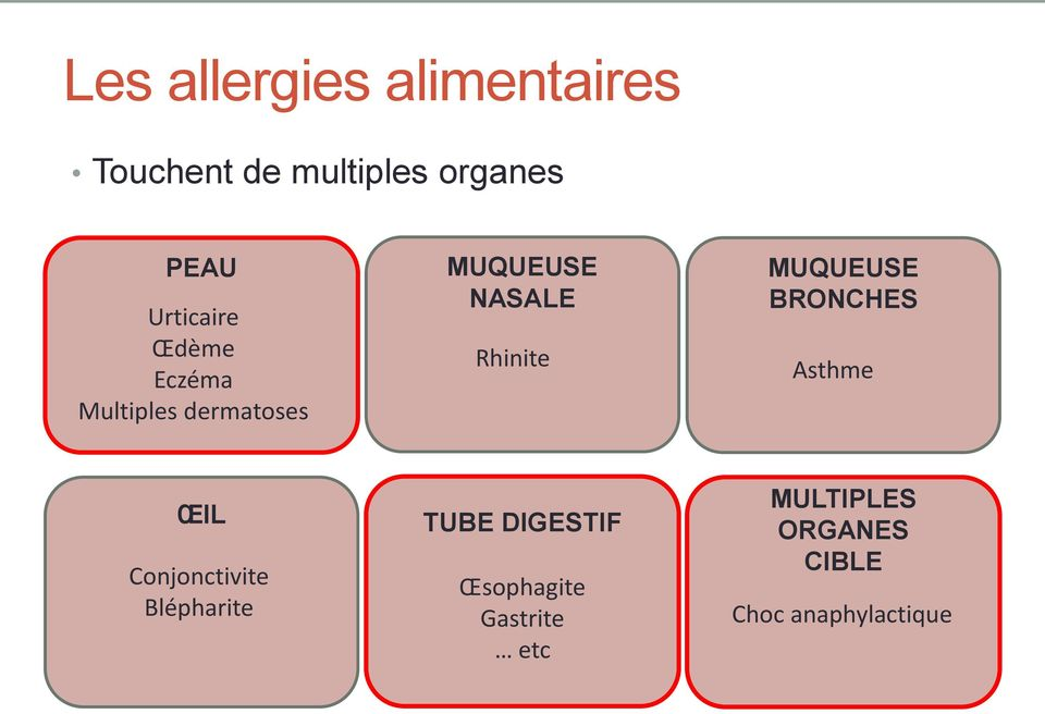 Rhinite MUQUEUSE BRONCHES Asthme ŒIL Conjonctivite Blépharite TUBE