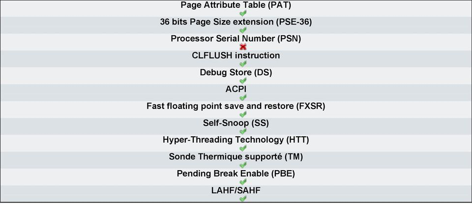 floating point save and restore (FXSR) Self-Snoop (SS) Hyper-Threading