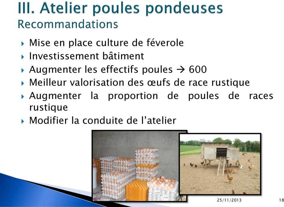 des œufs de race rustique Augmenter la proportion de poules