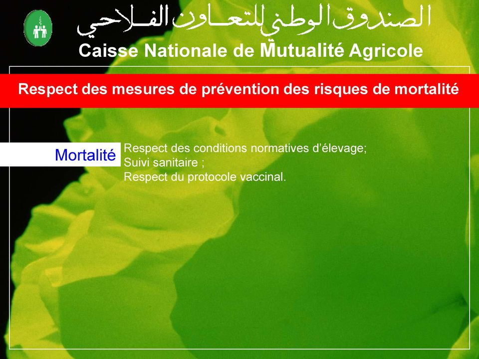 des conditions normatives d élevage;