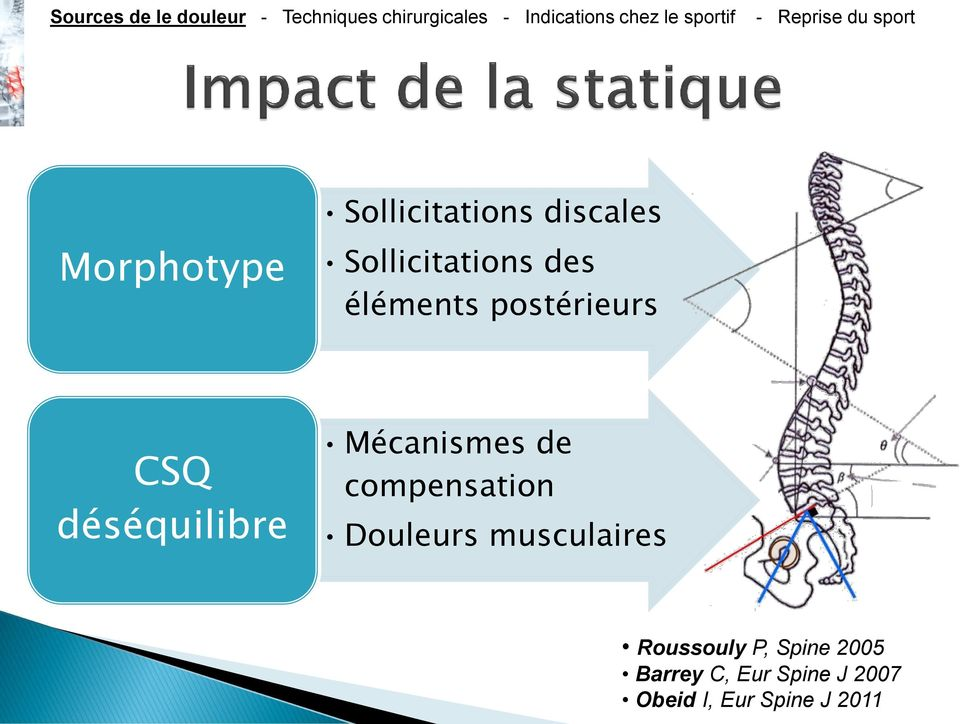 compensation Douleurs musculaires Roussouly P, Spine