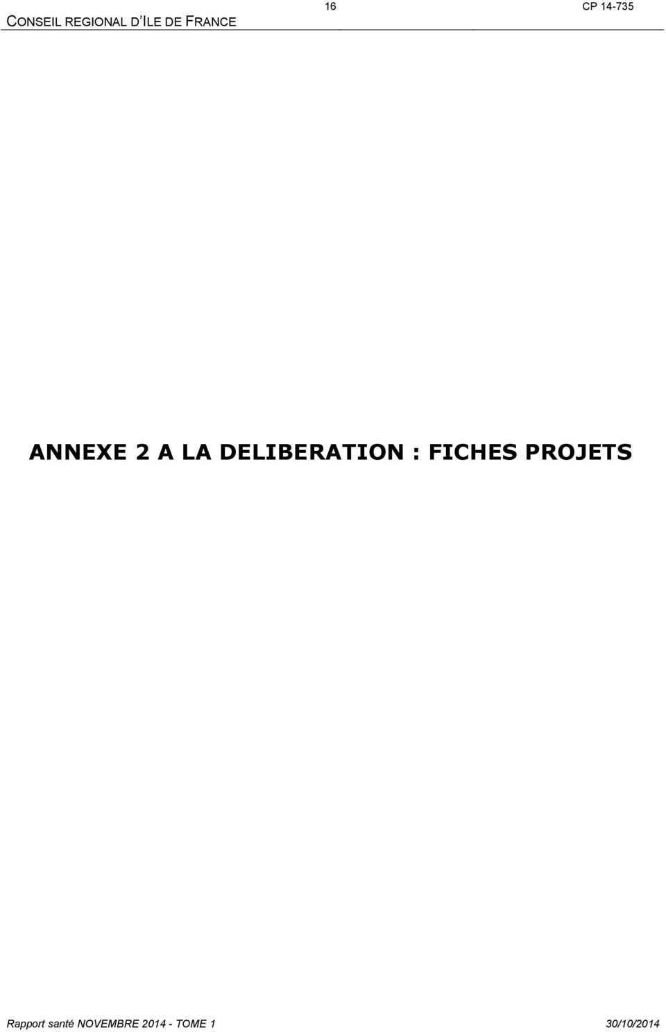 DELIBERATION : FICHES PROJETS