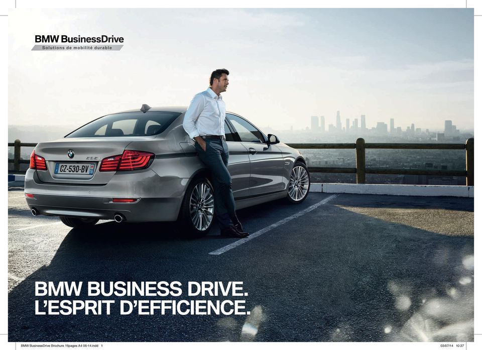 BMW BusinessDrive Brochure