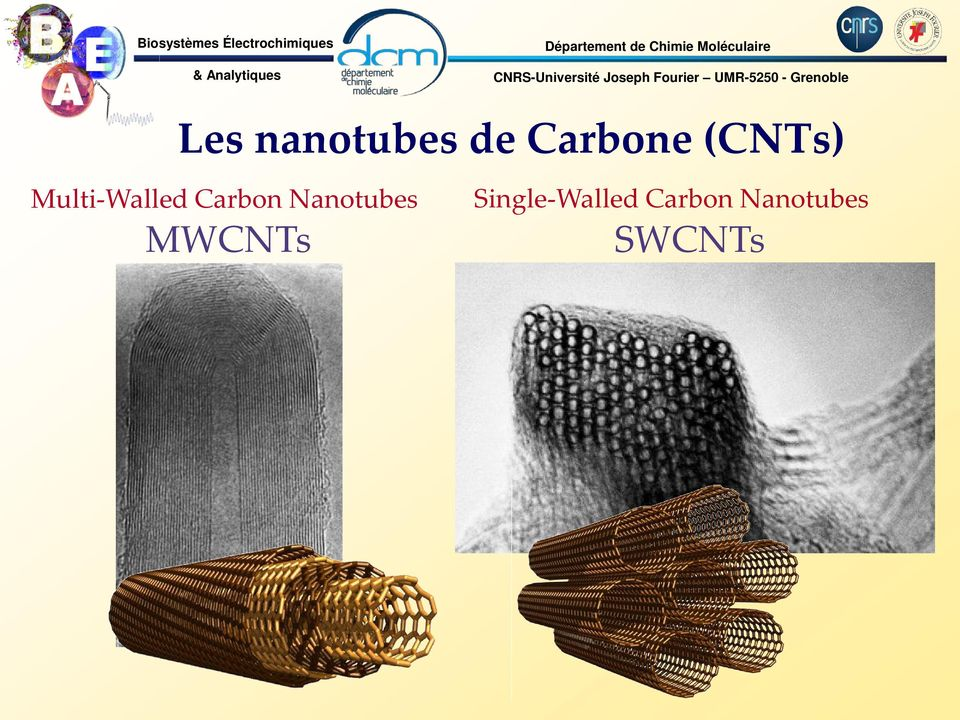 Carbone (CTs) Multi-Walled Carbon