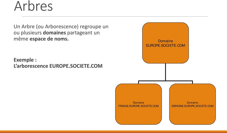 SOCIETE.COM Exemple : L arborescence EUROPE.SOCIETE.COM Domaine FRANCE.