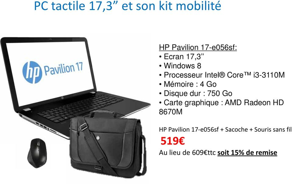 dur : 750 Go Carte graphique : AMD Radeon HD 8670M HP Pavilion 17