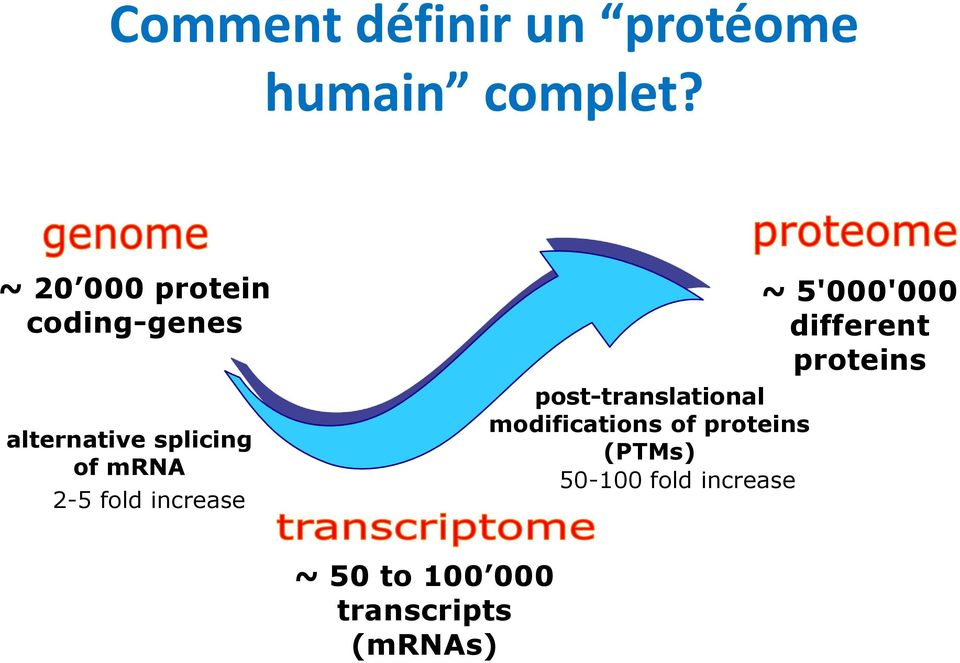 fold increase post-translational modifications of proteins