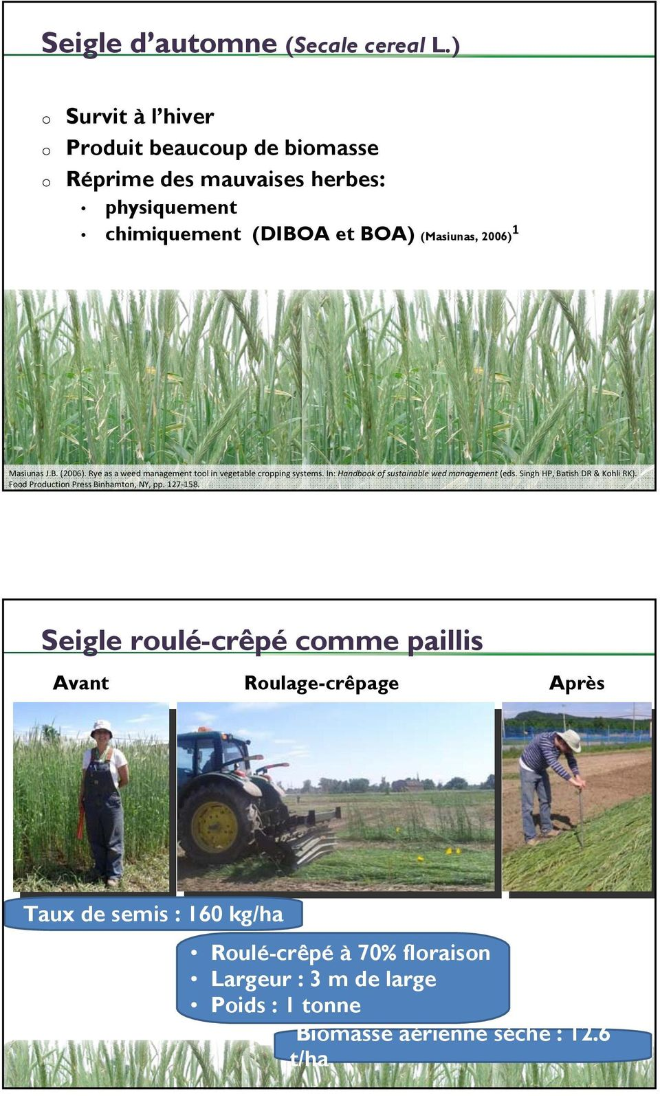 Masiunas J.B. (2006). Rye as a weed management tool in vegetable cropping systems. In: Handbook of sustainable wed management (eds.