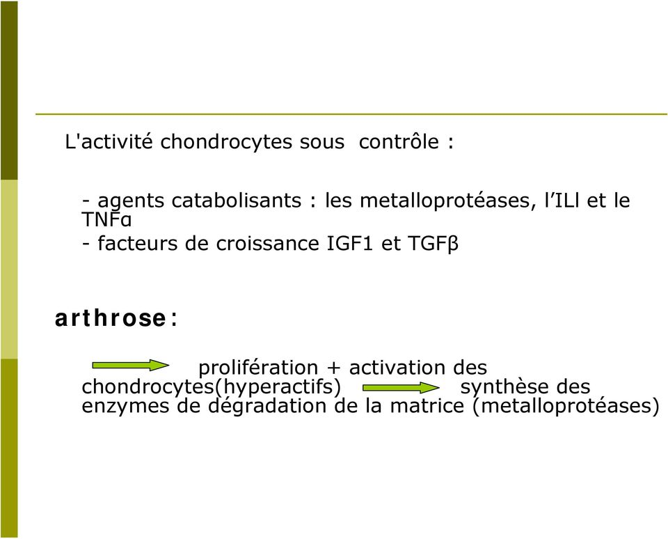TGFβ arthrose: prolifération + activation des