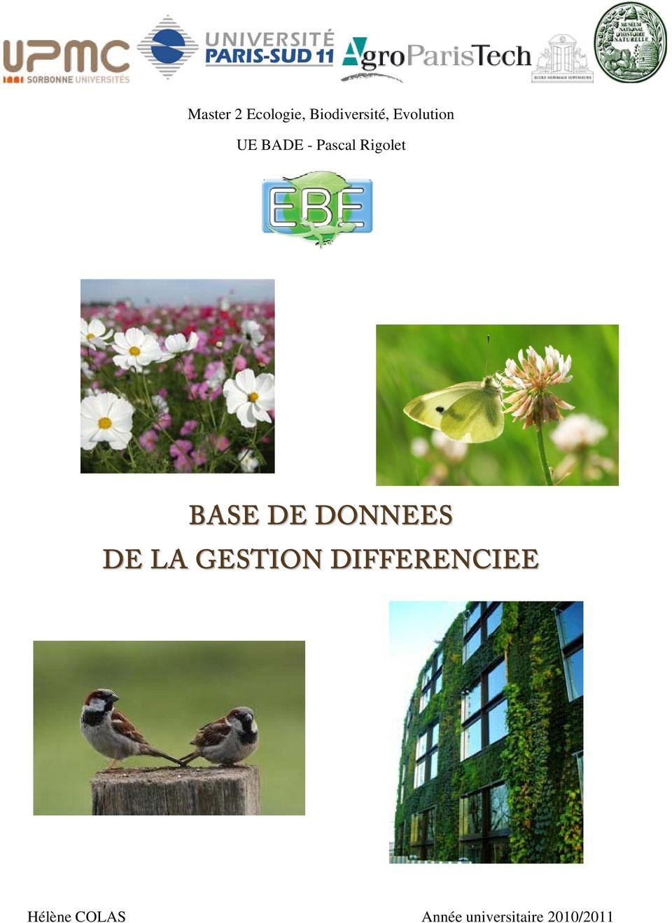 BASE DE DONNEES DE LA GESTION
