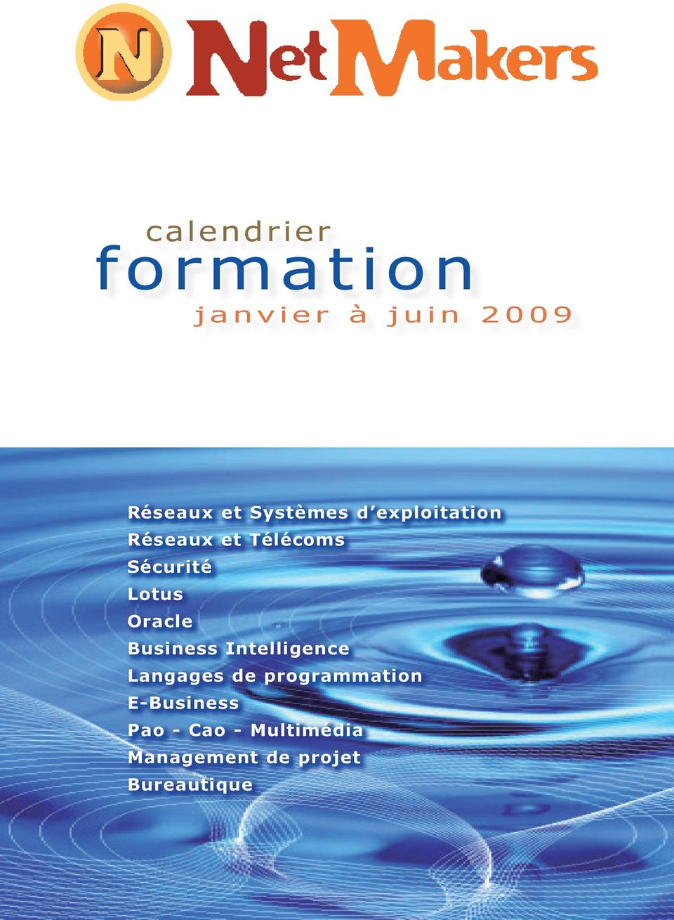 Lotus Oracle Business Intelligence Langages de