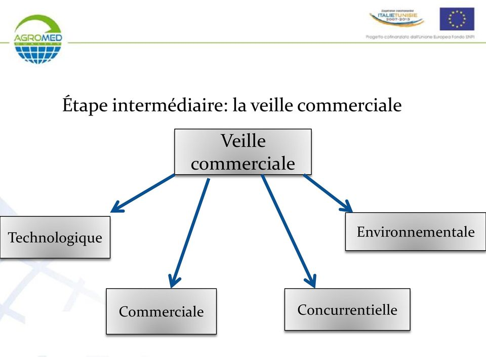 commerciale Technologique