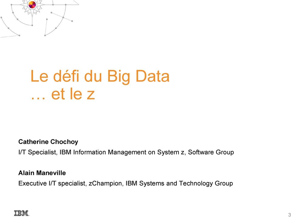 Software Group Alain Maneville Executive I/T