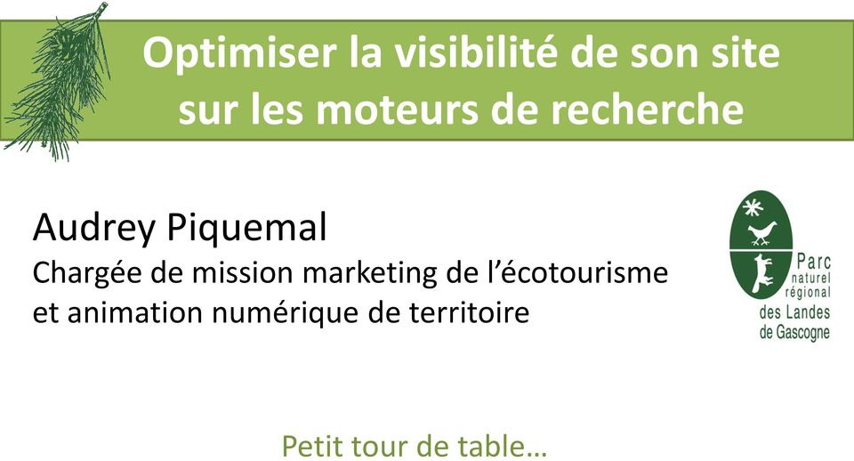 de mission marketing de l écotourisme et