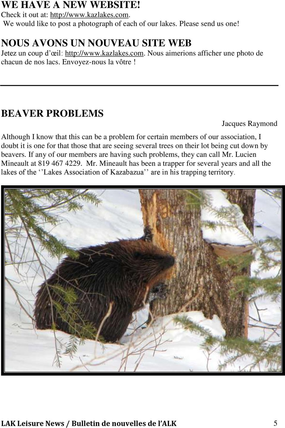 BEAVER PROBLEMS Jacques Raymond Although I know that this can be a problem for certain members of our association, I doubt it is one for that those that are seeing several trees on their lot being