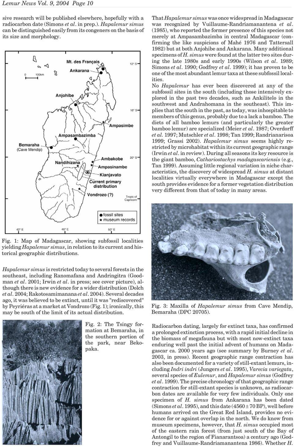 That Hapalemur simus was once widespread in Madagascar was recognized by Vuillaume-Randriamanantena et al.