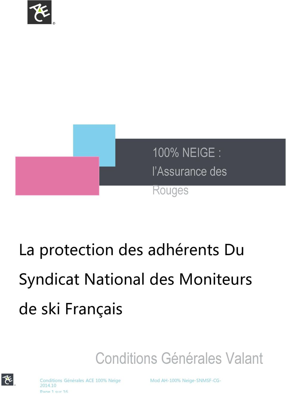 National des Moniteurs de ski Français