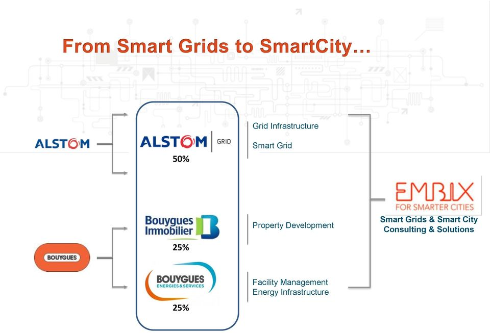 Smart City Consulting & Solutions 25%