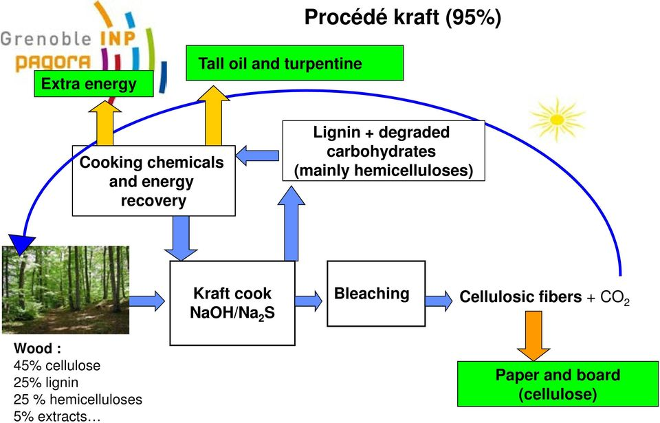 hemicelluloses) Kraft cook NaOH/Na 2 S Bleaching Cellulosic fibers + CO 2